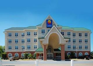 Comfort Inn and Suites Dallas